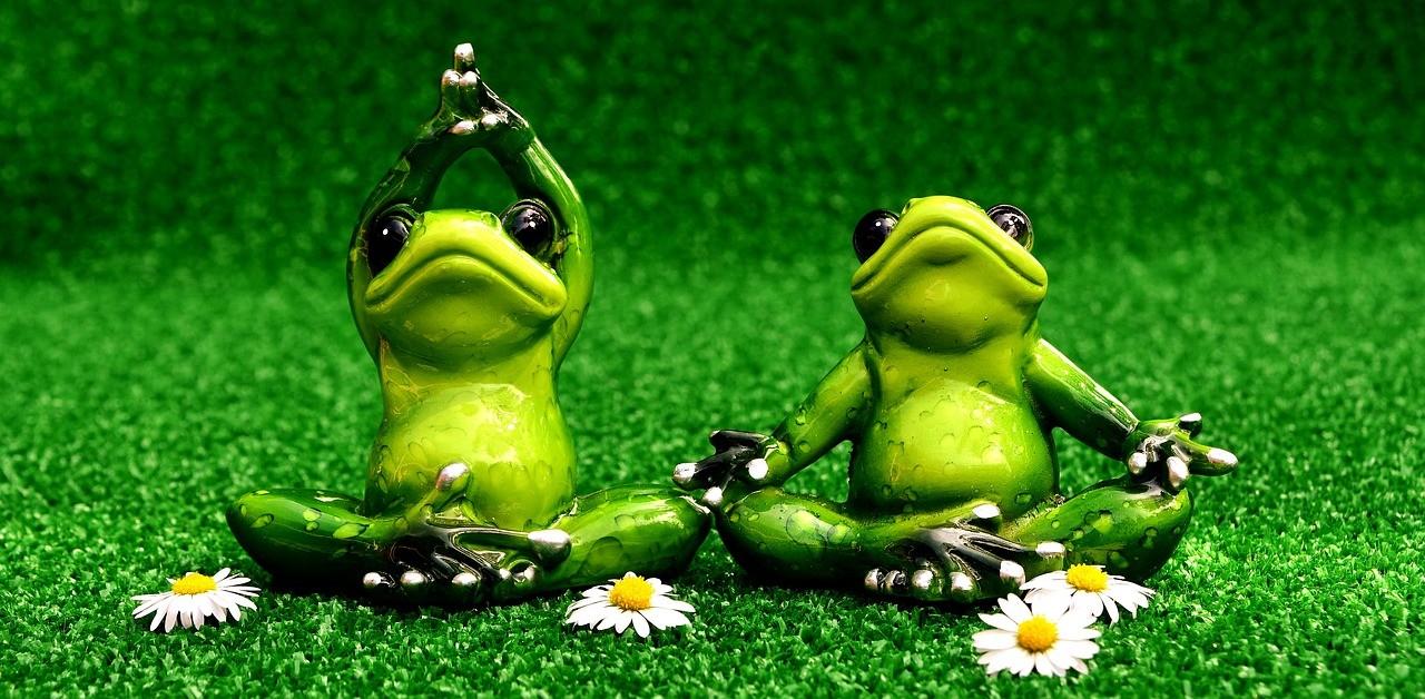 Der Frosch und die Störche