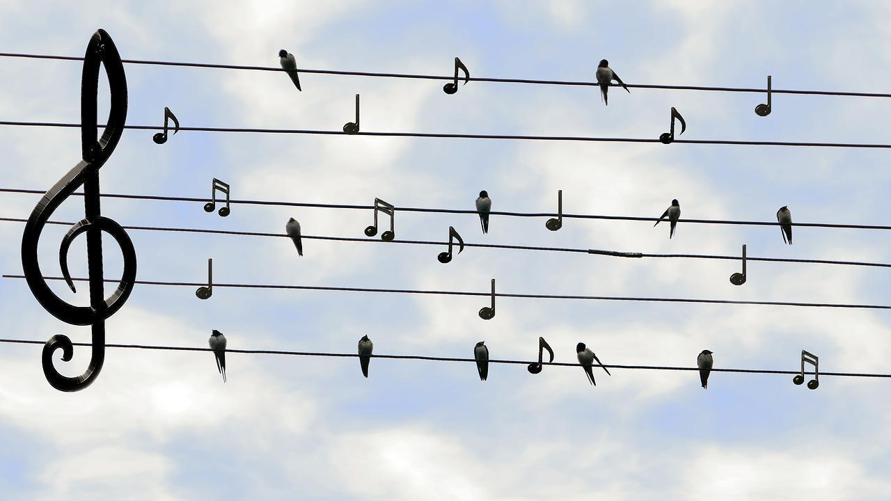 Nenne mir einen Song