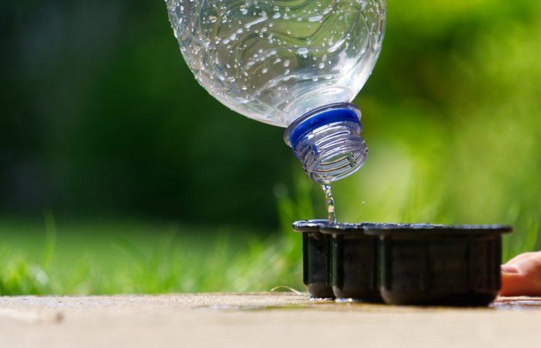 Wasserbecher und Flasche