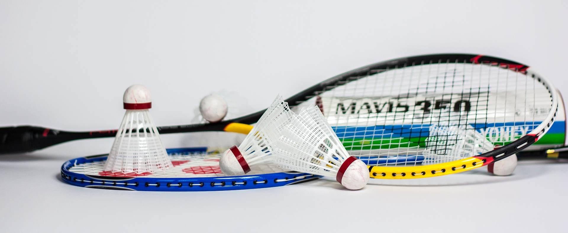 badminton regeln und anleitung