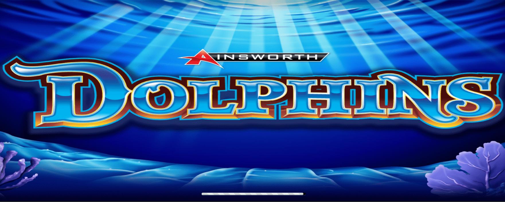 dolphins beitrag