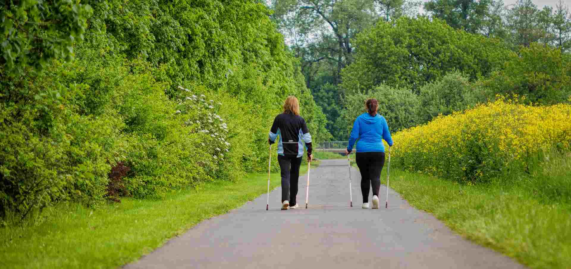 nordic walking regeln