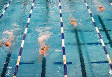 schwimmen olympia